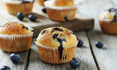 Muffins de arándanos ecológicos Campoberry