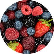 Frutos del bosque Campoberry