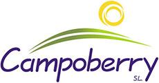 campoberry-logotipo-color