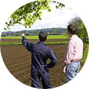 Instalación de plantaciones de arándano Campoberry